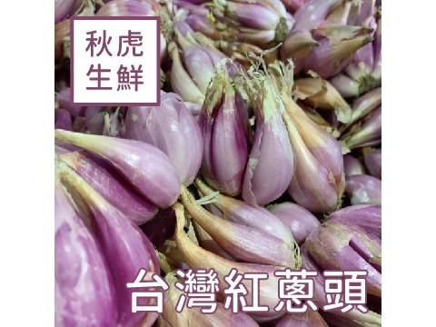 台灣紅蔥頭 (600g+-5%/散裝)