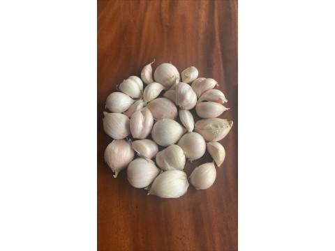 台灣蒜米(600g+-10%/袋)